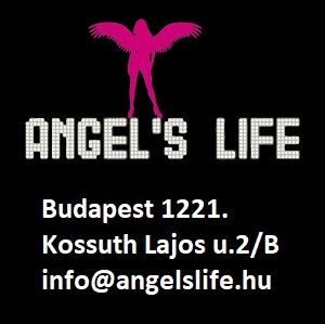 ANGEL'S LIFE