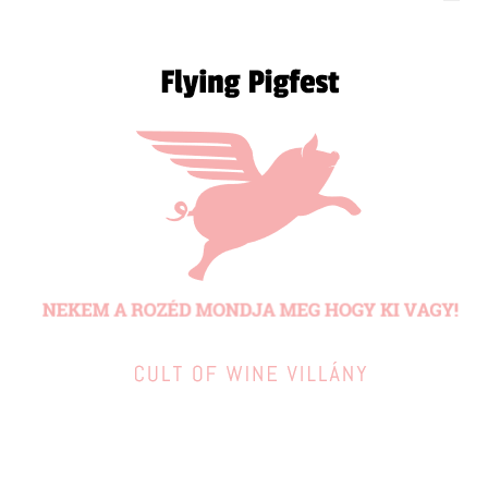 Flying pigfest - 120_60