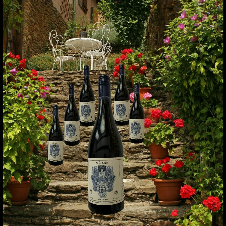 Cult of Wine Villány